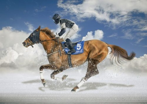 اسب سواری روی یخ