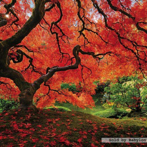 پازل 1500 ادوکا باغ ژاپنی