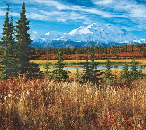 پازل ۱۵۰۰ تکه DENALI National Park – USA