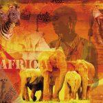 پازل ۱۰۰۰ تکه احساس آفریقا