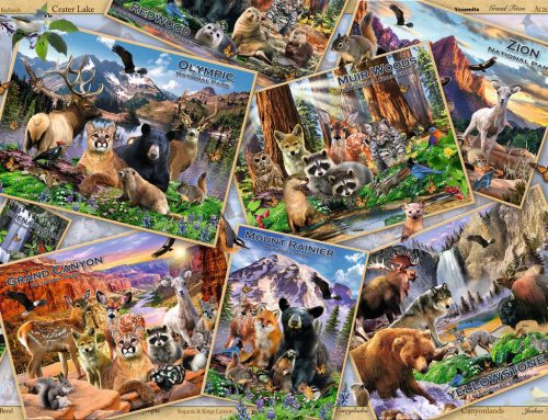 پازل ۲۰۰۰ تکه PostCard Parks