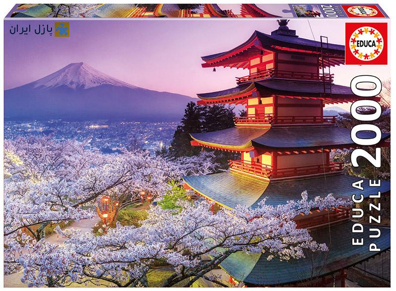 فوجی ، قصری در ژاپن
