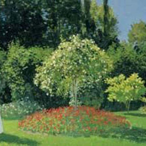 Dame en blanc au jardin