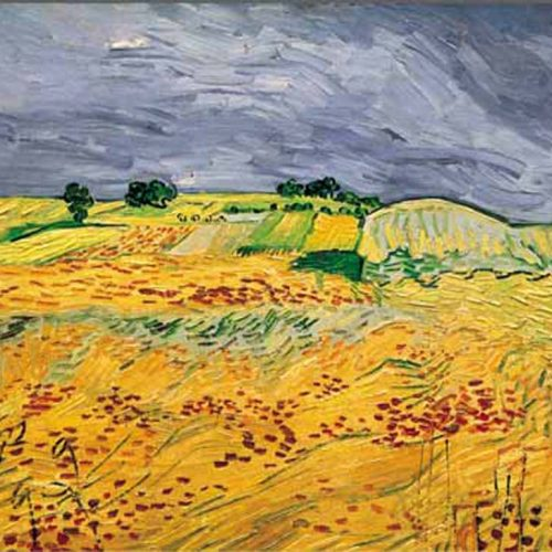 van gogh fields