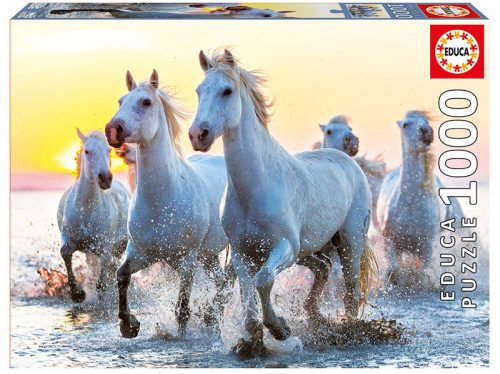 White horses at sunset
