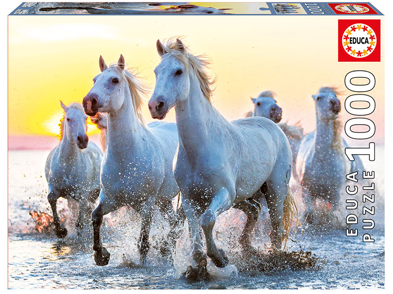 White horses at sunset