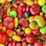 پازل ۱۰۰۰ تکه گوجه فرنگی ها