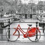 پازل ۱۰۰۰ تکه پانوراما دوچرخه آمستردام